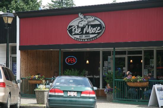 Blue Moose : Coffee House
