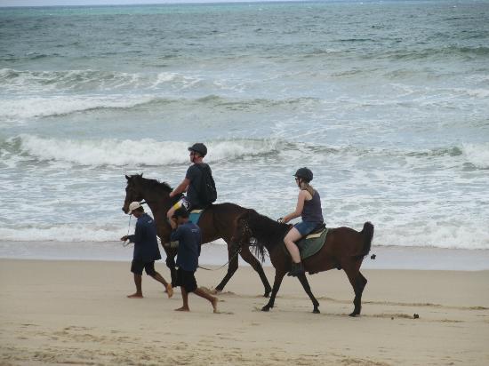 Movenpick Resort Bangtao Beach Phuket: los caballos y sus sorpresitas en la playa