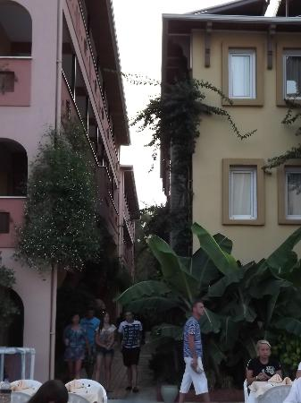 Kosdere Club Hotel: Too close?
