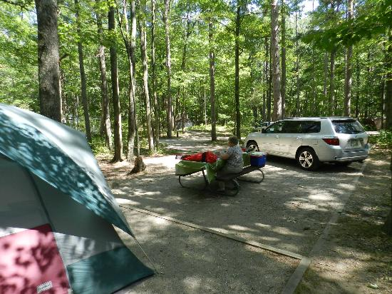 Rustic Camping On Lake Michigan Get There Early And You