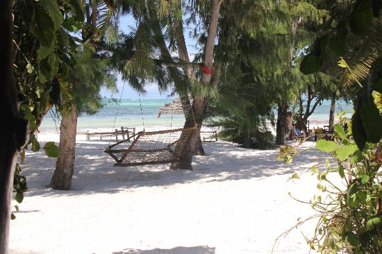 Evergreen Bungalows: plage