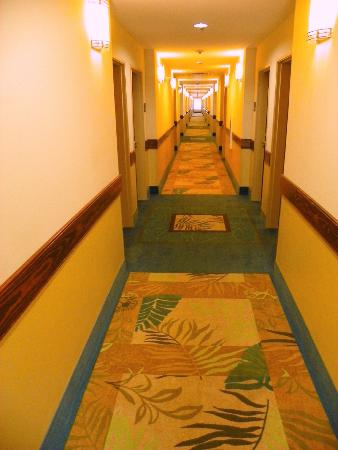 Holiday Inn Express Hotel & Suites Gulf Shores: Clean and bright hallway