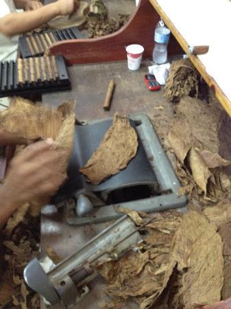 cigar manufacturing bild fr n don lucas cigars punta cana tripadvisor. Black Bedroom Furniture Sets. Home Design Ideas