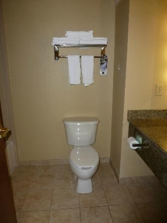 Holiday Inn Express Hotel & Suites Lewisburg: Bathroom