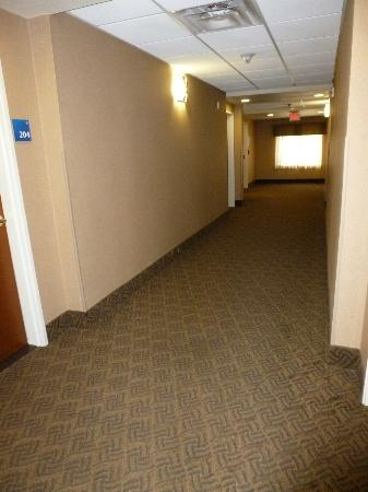 ‪‪Holiday Inn Express Hotel & Suites Lewisburg‬: Hallway on second floor‬