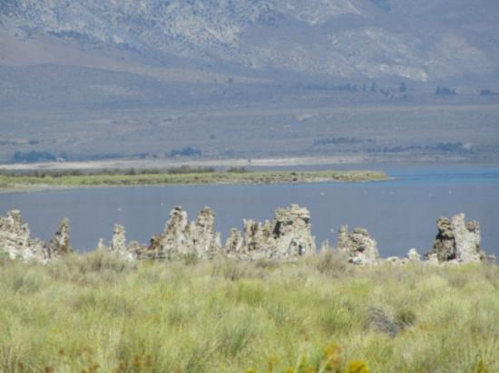Lake View Lodge: Mono Lake