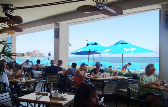 Shore Bird Restaurant Beach Bar
