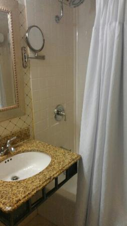 Crowne Plaza Harrisburg-Hershey: shower
