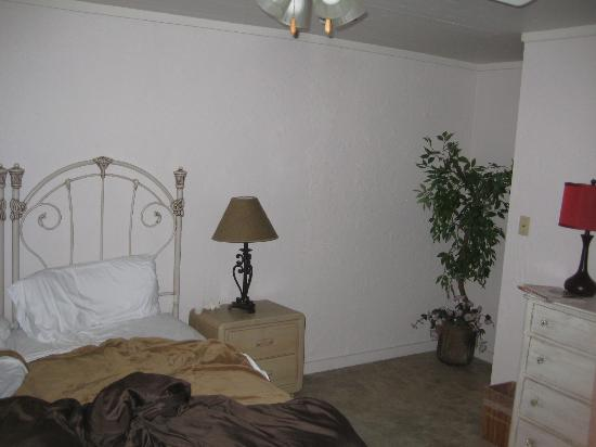 BlissWood Bed and Breakfast Ranch: The reality of the bedroom.