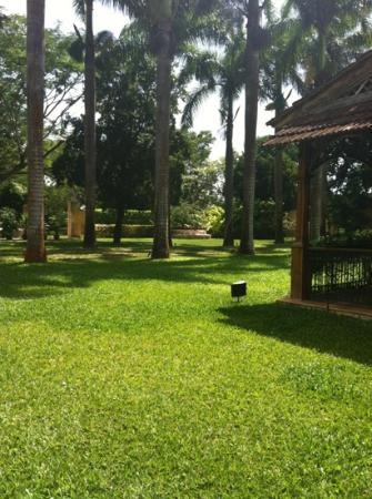 Filete bruja con un toque de lim n delicioso picture - Casas con jardines bonitos ...