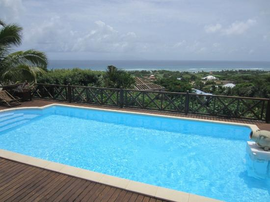 Villa les Bougainvilliers: Pool with view