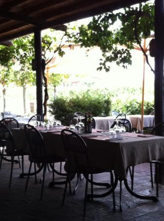 Antica Osteria Busocaldo: tavoli esterni, sullo sfondo i filari di vite