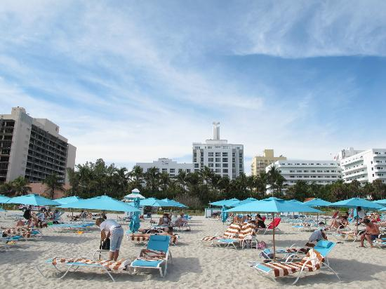 The Palms Hotel & Spa: On the beach front