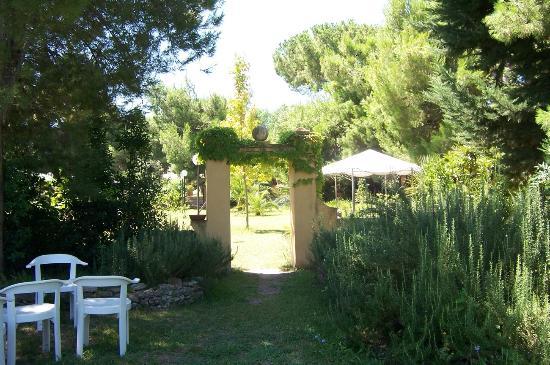 Jardin foto di hotel villa rita paestum tripadvisor for Hotel villa jardin tultitlan