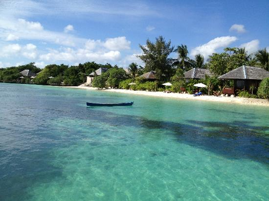 Wakatobi Dive Resort: Standard bungalow and villas.