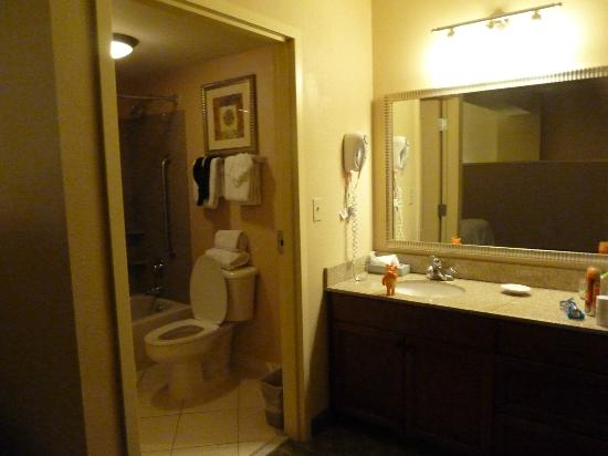 Residence Inn Memphis Downtown: Bathroom