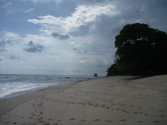 Florblanca Resort: Beach outside Florblanca