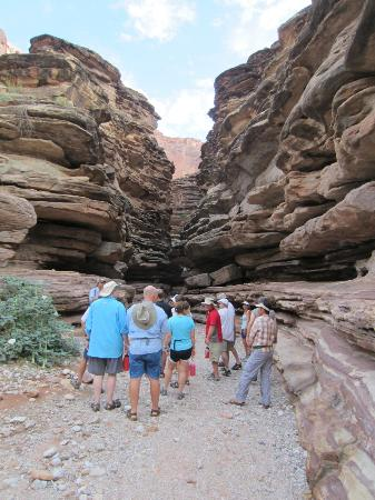 Outdoors Unlimited Grand Canyon Rafting: Day Hike