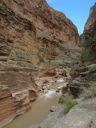 Outdoors Unlimited Grand Canyon Rafting: Lower Canyon