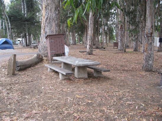 Morro Bay Campsite - Picnic Table