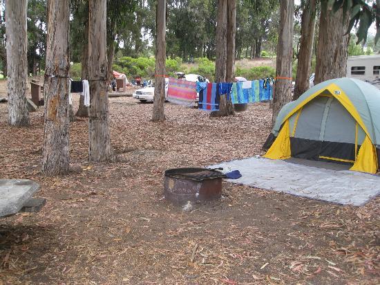 Morro Bay, CA: Morrow Bay Campsite - Tent set up