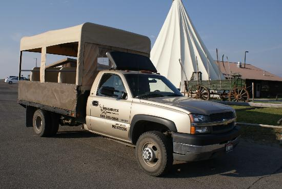 BrushBuck Wildlife Tours - Day Tours: The safari vehicle