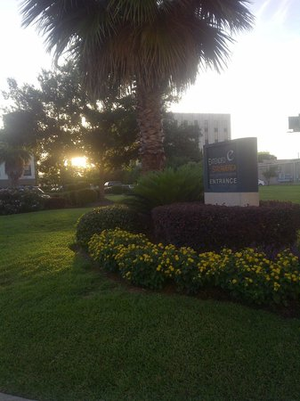Extended Stay America - Houston - I-10 West - Citycentre: Atardeser en Verano