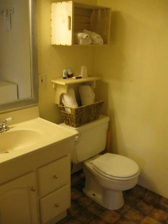 Canyon Motel & RV Park : bathroom