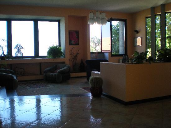 Villa La Ginestra dell'Etna Bed and Breakfast: Ampio salone