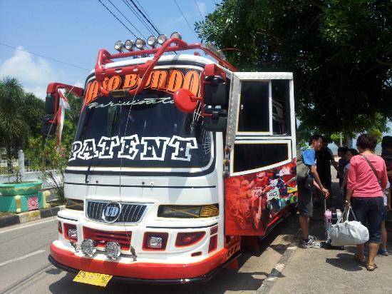 Loola Adventure Resort: The unique bus that welcomes us