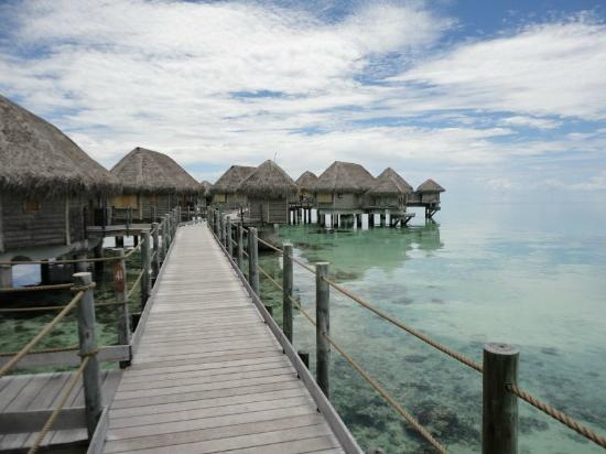 Tikehau Pearl Beach Resort: The overwater bungalows