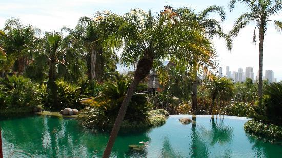 Asia Gardens Hotel & Thai Spa, a Royal Hideaway Hotel: vistas desde el buffet