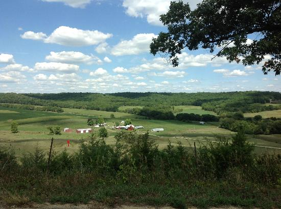 Iowa Wine Tours: Galena countryside