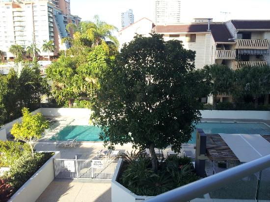 Trilogy Surfers Paradise : pool area from balcony spa is hidden behind the tree