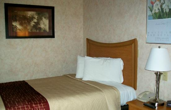 Red Roof Inn Staunton: Our double bed room