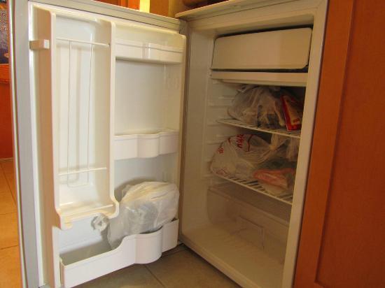 هامبتون إن باي هيلتون كاملوبس: Big mini fridge