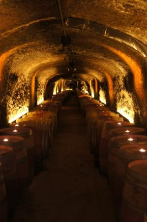 Del Dotto Vineyards & Winery: the cave. tastiness inside.