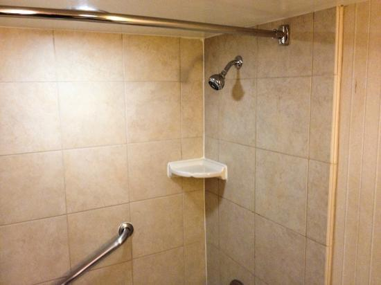 Hilton Arlington: Shower
