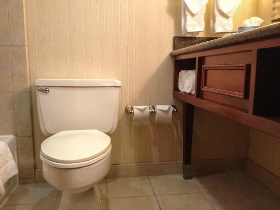 Hilton Arlington: Toilet