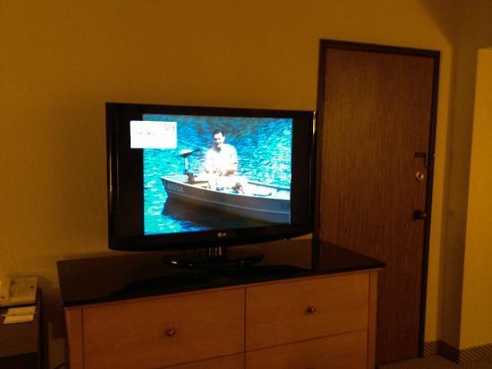 Hilton Arlington: HDTV