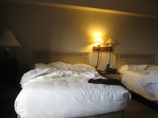 Royal Dearborn Hotel & Convention Center: Executive Double Room