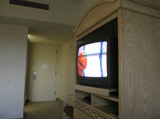 Royal Dearborn Hotel & Convention Center: Old style tube TV