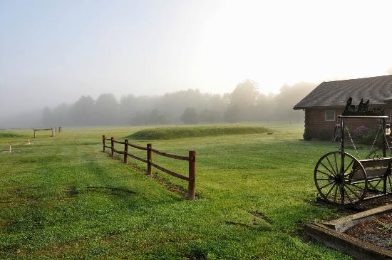 Black Forest Inn : The grounds