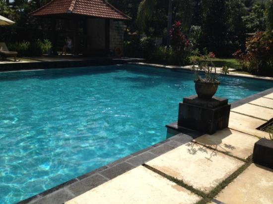 Kusuma Resort : Pool
