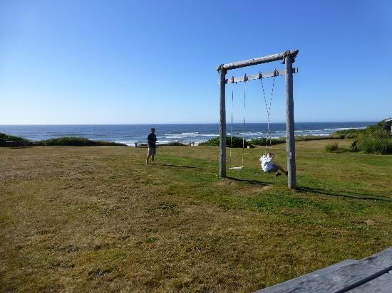 Wayside Lodge: Swings a huge hit with the kids!
