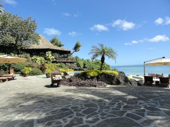 Pacific Resort Aitutaki: Pool and bar area, with restaurant/tree house above