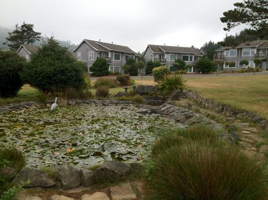 The Yachats Inn: pond