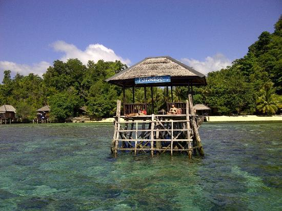 Kadidiri Paradise Dive Resort: step to the skin diving area