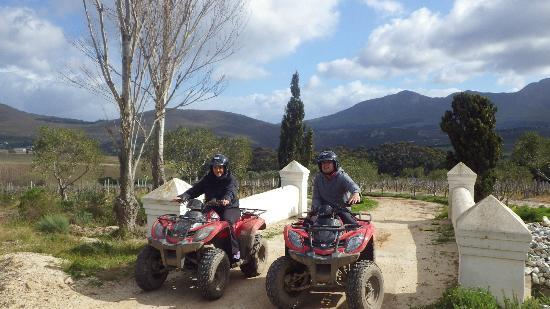 Hermanus Forest Adventures: Hemel & Aarde valley
