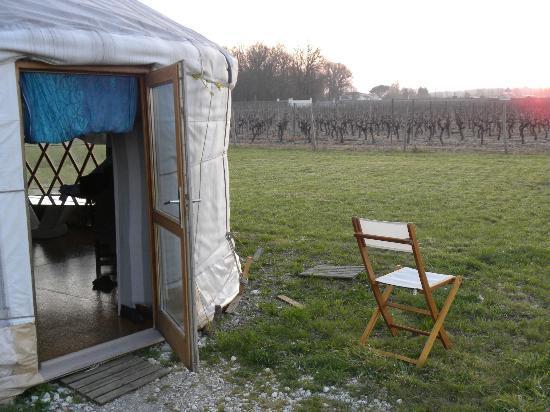 Salignac-sur-Charente, Frankrijk: vue sur les vignes